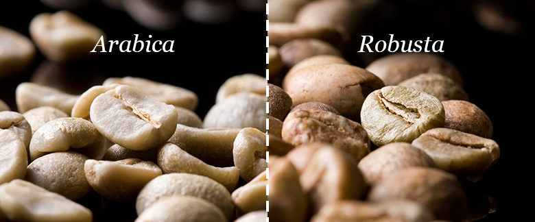types-of-coffee-beans